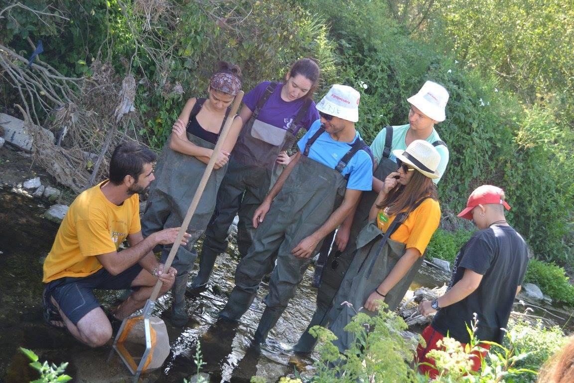 Busquem coordinadors/es per 1 camp de voluntariat als Pirineus catalans