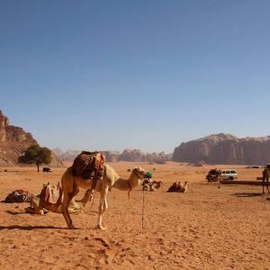 El que ens uneix i el que ens separa – Voluntariat a Jordània