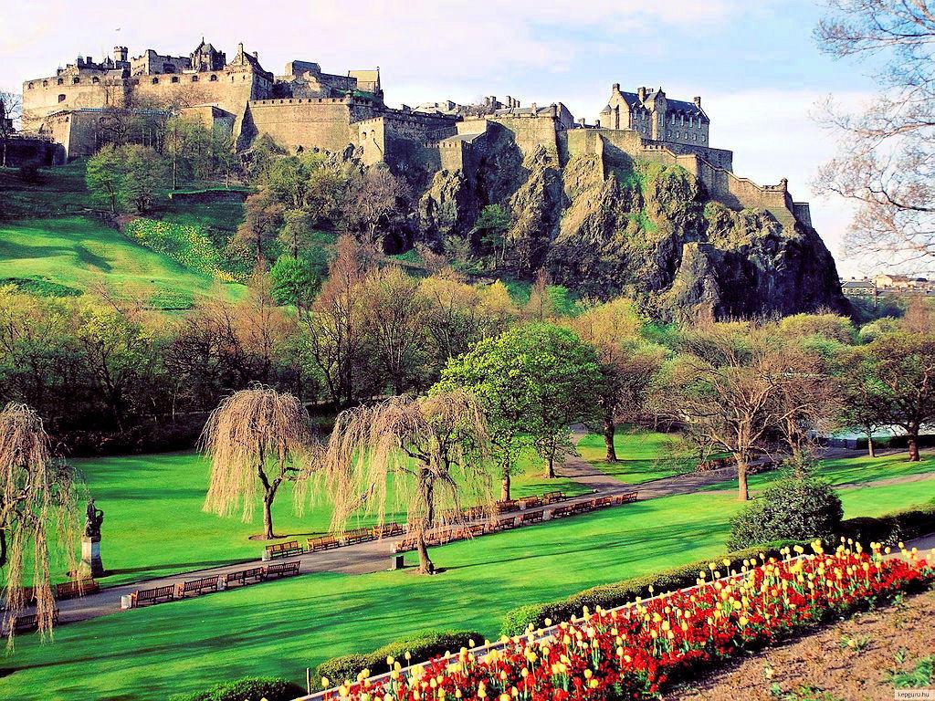 Urgent! 3 places per a un voluntariat d'un mes a Edimburg!