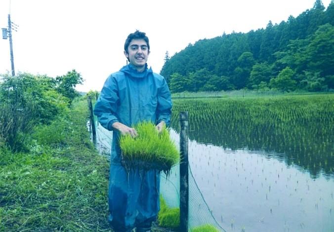 Voluntariat de llarga durada a la Granja Kanazawa (Japó)