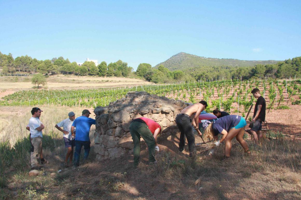 Recuperades 3 barraques de vinya de pedra seca gràcies a la col•laboració d'11 voluntaris del camp de treball internacional de l'Urpina organitzat per AMPANS, amb el suport del Servei Civil Internacional de Catalunya