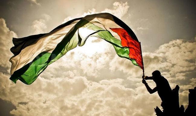 Coneix Palestina en primera persona! Fes un camp de voluntariat!
