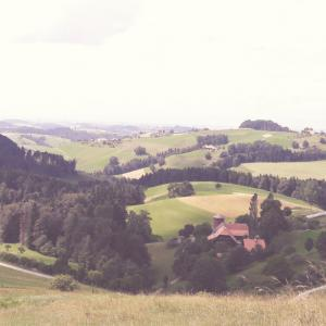 Camp de voluntariat a Suïssa