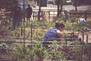 noia treballant en un hort