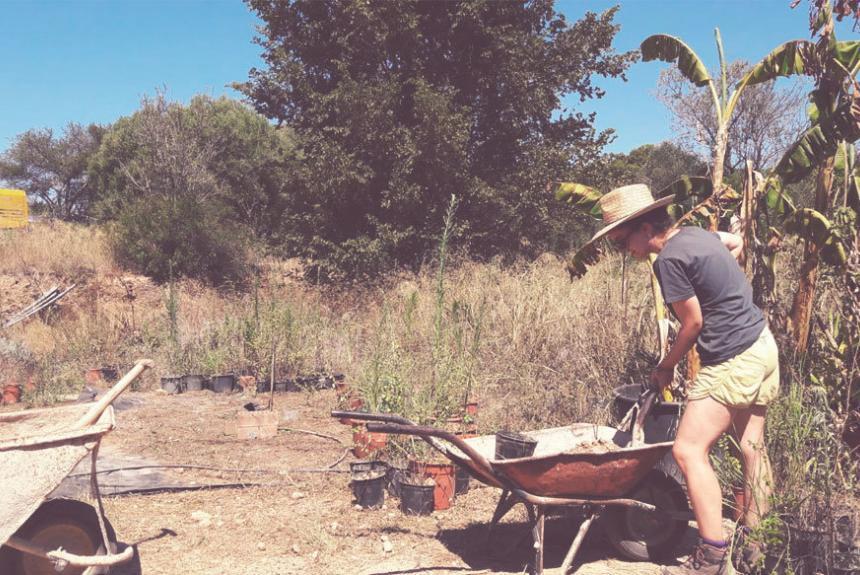Participa a un training sobre permacultura!