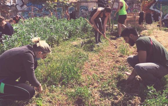 Participa al training sobre permacultura social a Kosovo